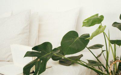 Verão: como preparar o quarto para dormir melhor?
